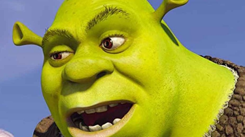 Closeup on Shrek's face