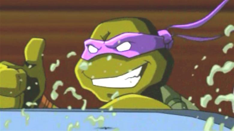 Donatello from 2003 Teenage Mutant Ninja Turtles cartoon