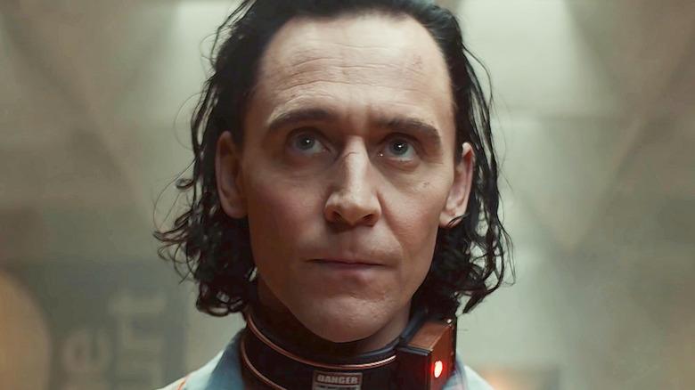 Loki looking up wearing shock collar