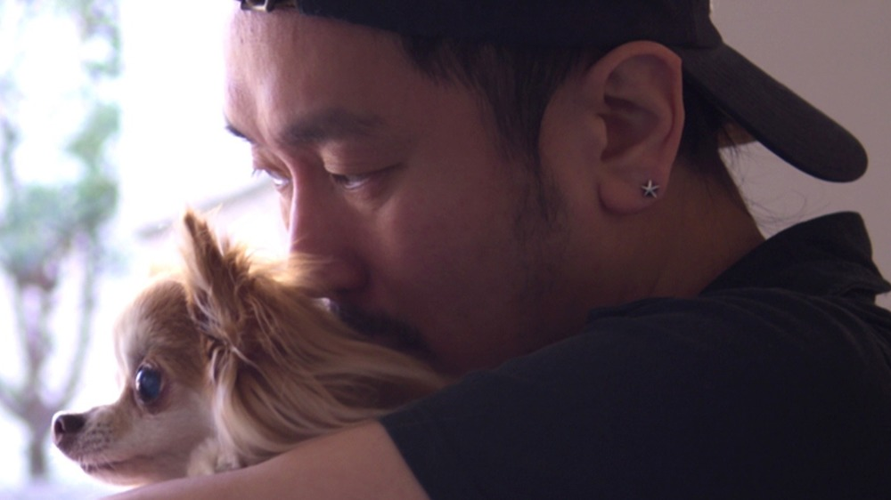 Dogs owner with pet