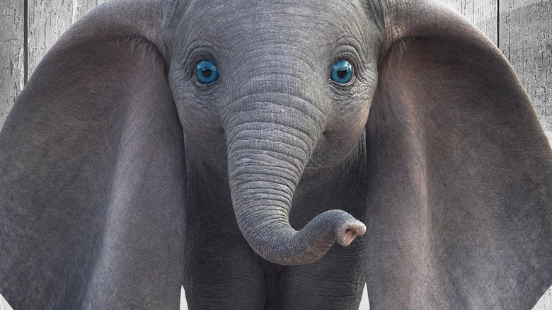 Dumbo live-action character poster