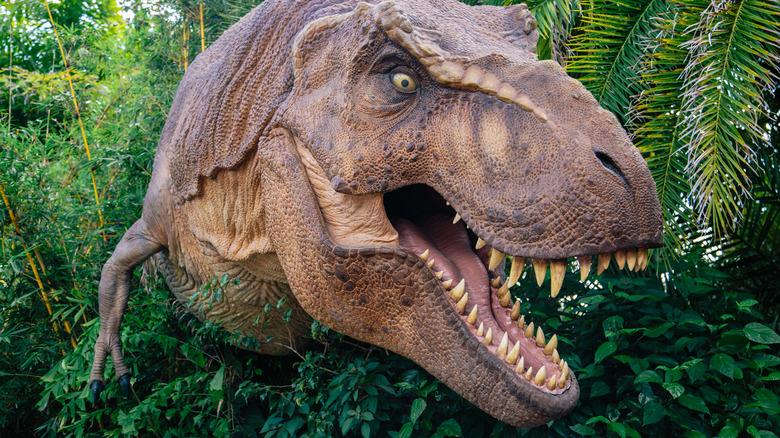 T-Rex pokes head out