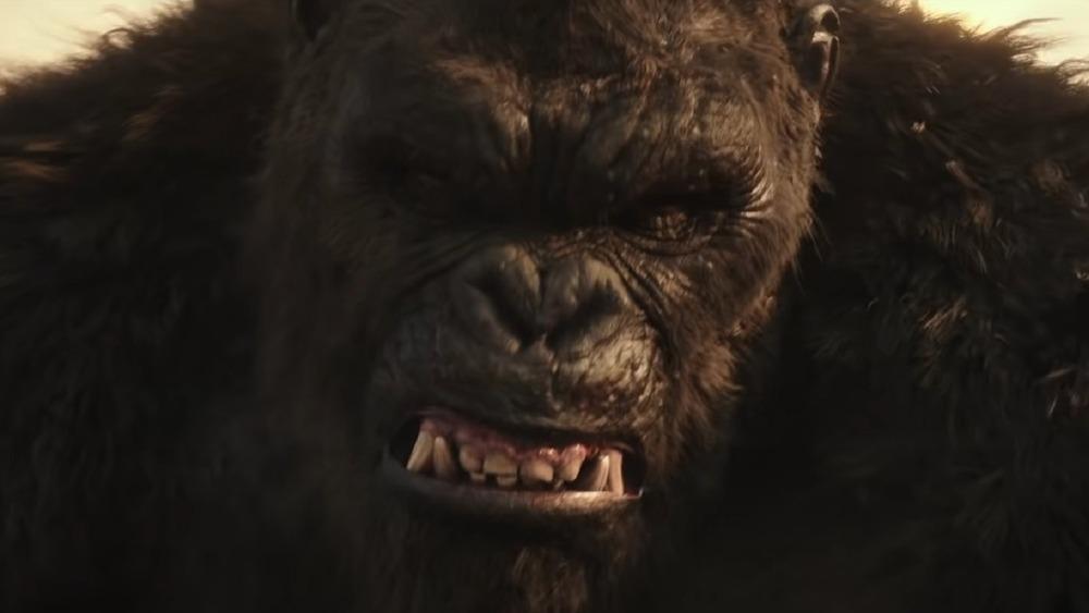 Kong bearing teeth