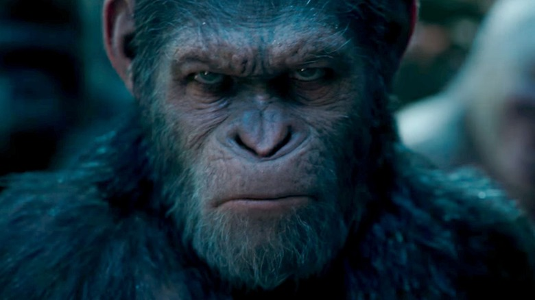 Still from War for the Planet of the Apes
