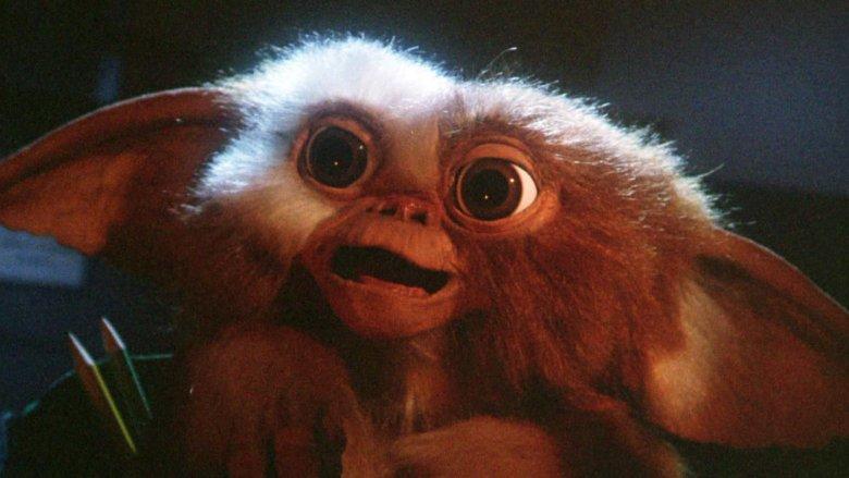 Gizmo in Gremlins (1984)