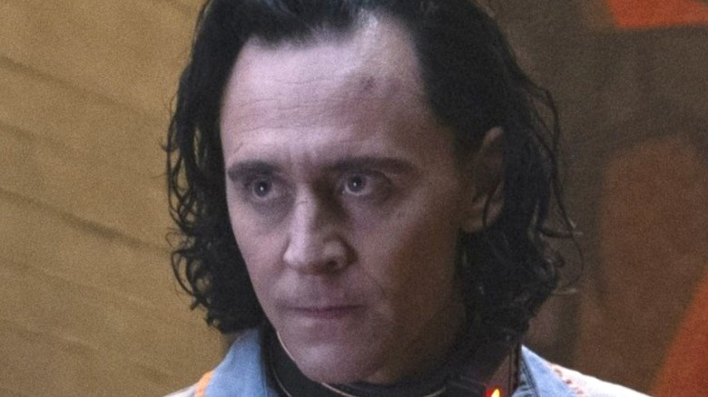 Loki wearing collar