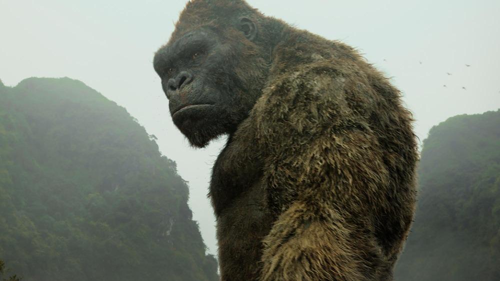 King Kong frowns