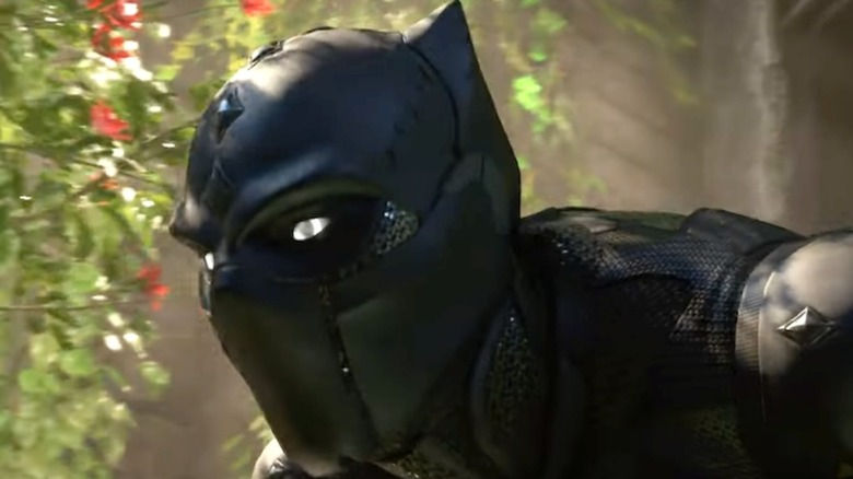 Black Panther pounce