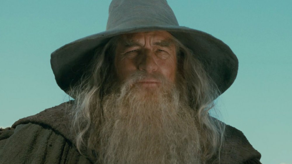 Ian McKellen as Gandalf in The Lord of the Rings: The Fellowship of the Ring