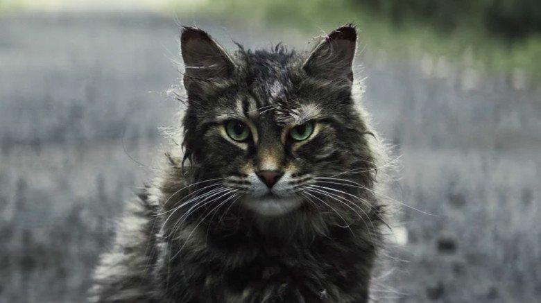 Pet Sematary remake cat Church