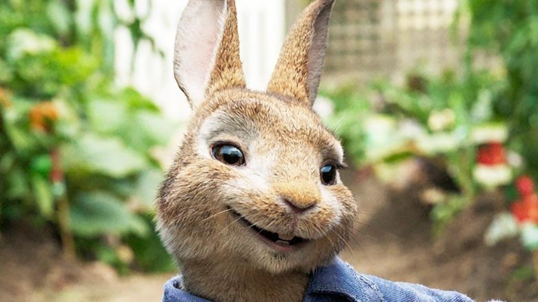 Peter Rabbit smirking