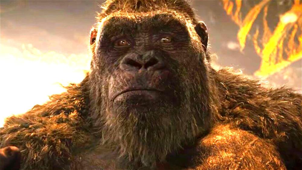 Kong seeming sympathetic
