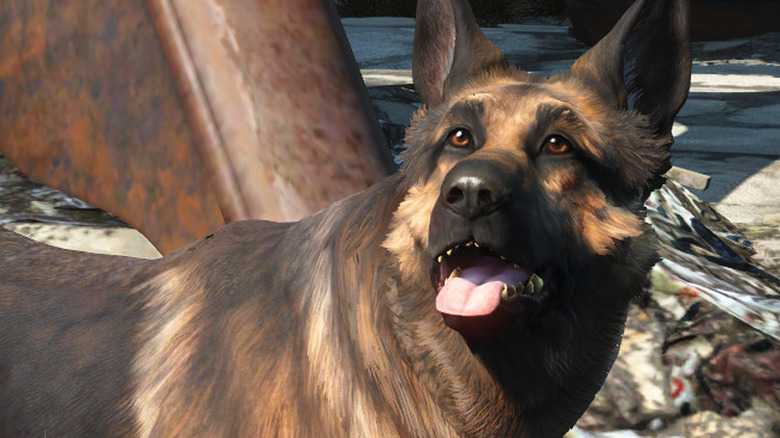 Dogmeat in Promotional Art for Fallout 4