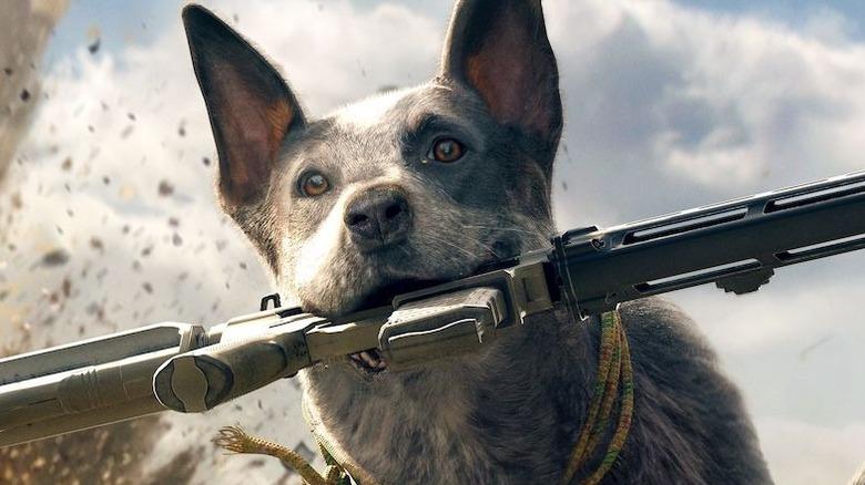 Boomer Carrying a Gun