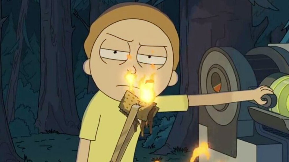 Morty Smith in The Whirly Dirly Conspiracy