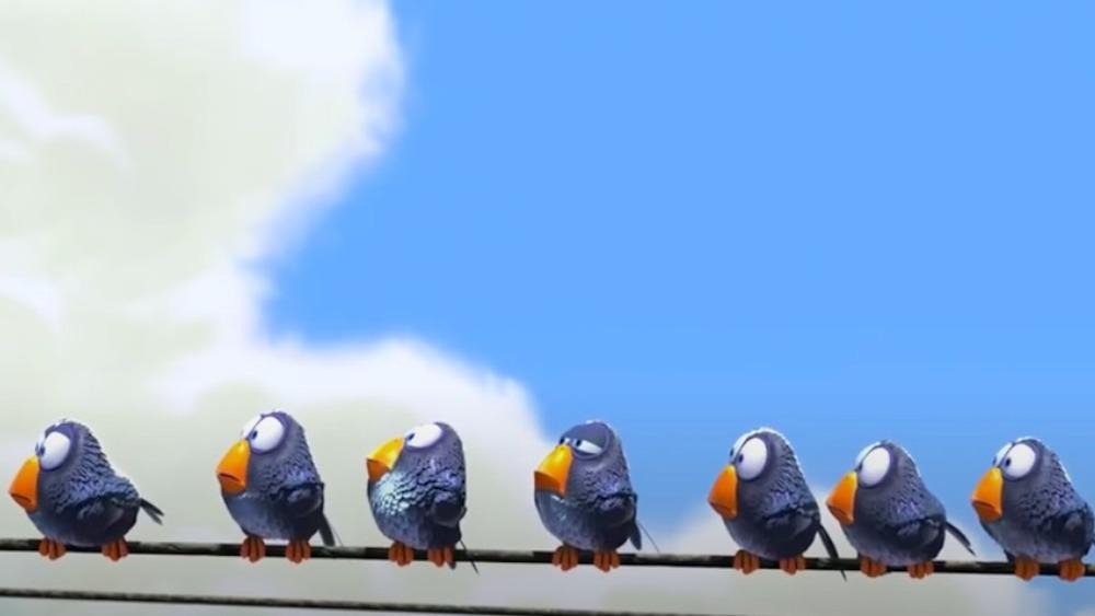 For the Birds still