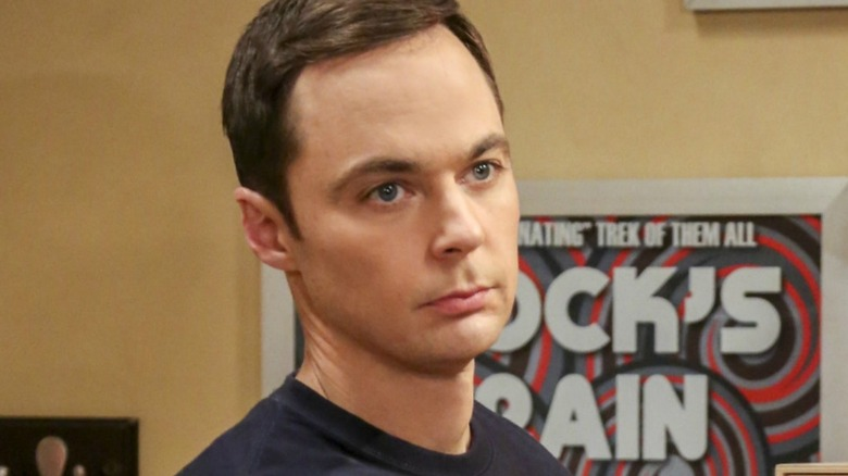 Jim Parsons Dr. Sheldon Cooper The Big Bang Theory