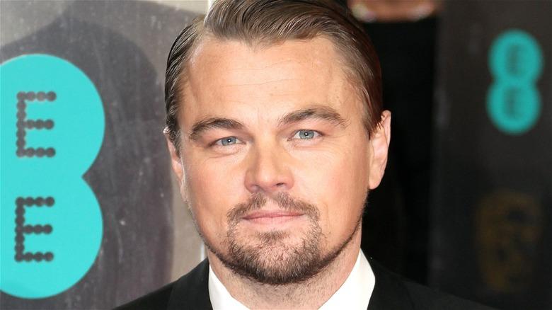Leonardo DiCaprio goatee