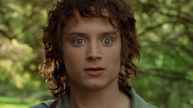 Frodo Baggins in the Shire