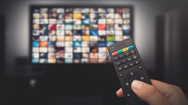 Person holding TV remote