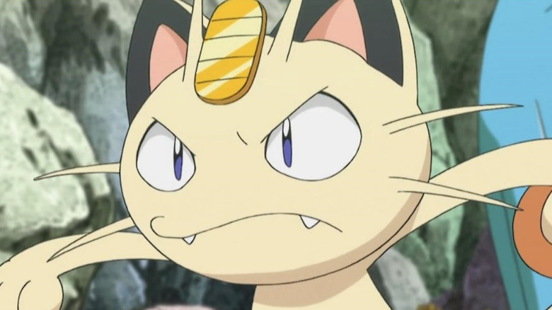 Meowth stares angrily