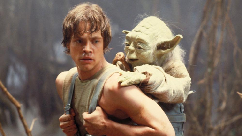 Yoda and Luke Skywalker training