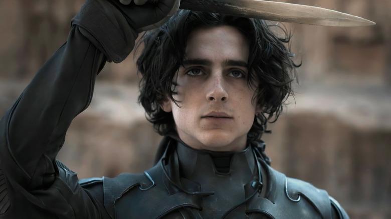 Timothee Chalamet as Paul Atreides, from Dune