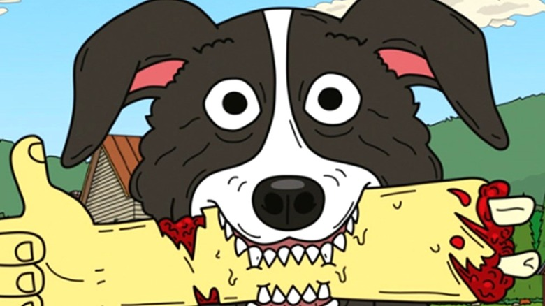 Mr Pickles with a bloody stump in his mouth