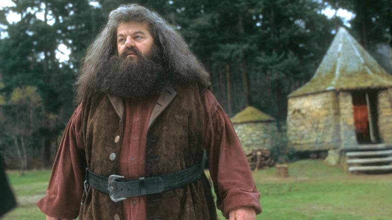 Rubeus Hagrid concerned