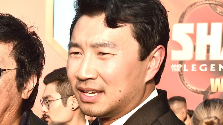Shang-Chi Premiere Simu Liu