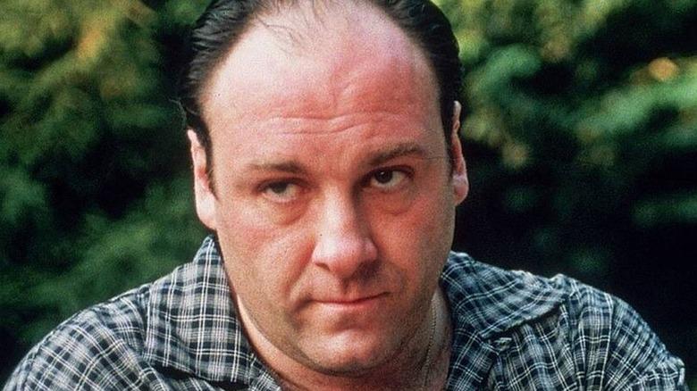 Tony Soprano looking annoyed