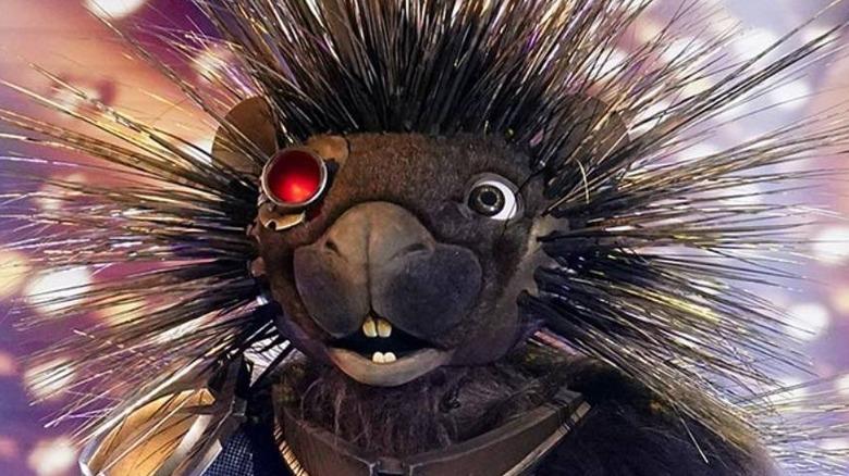 The Masked Singer Robopine