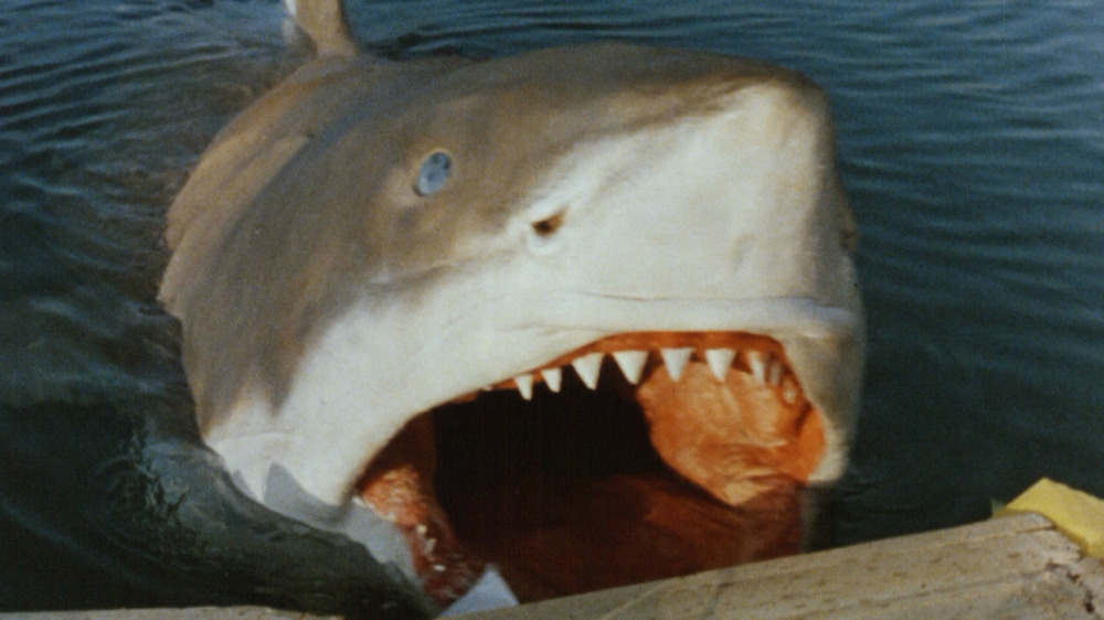 Cruel Jaws attack