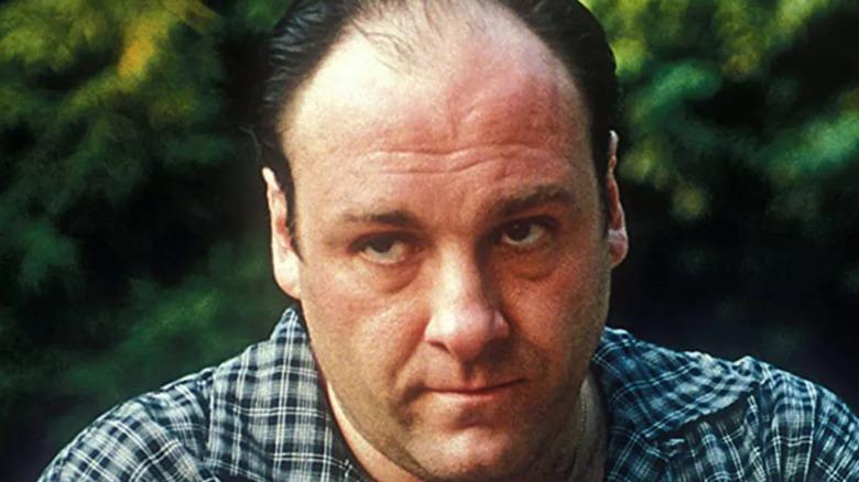 "James Gandolfini on ""The Sopranos"""