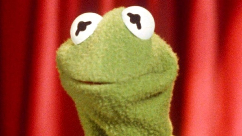 Tight close-up on Kermit the Frog's face