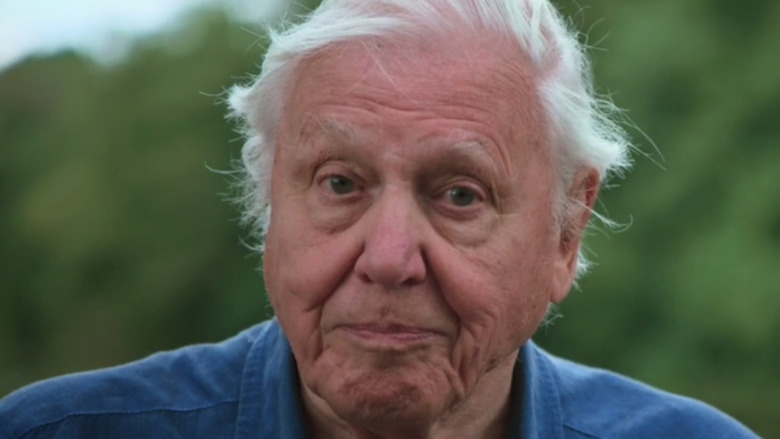 David Attenborough in Life in Color