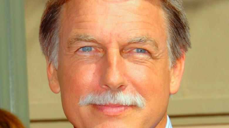 Mark Harmon mustache
