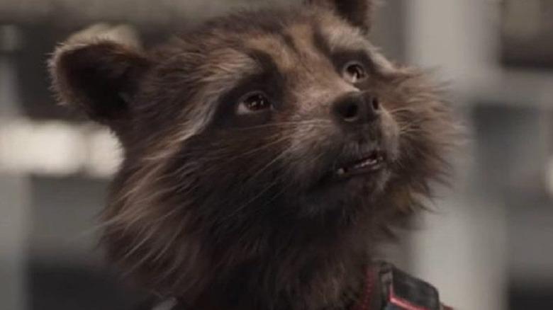Rocket Raccoon in Avengers: Endgame