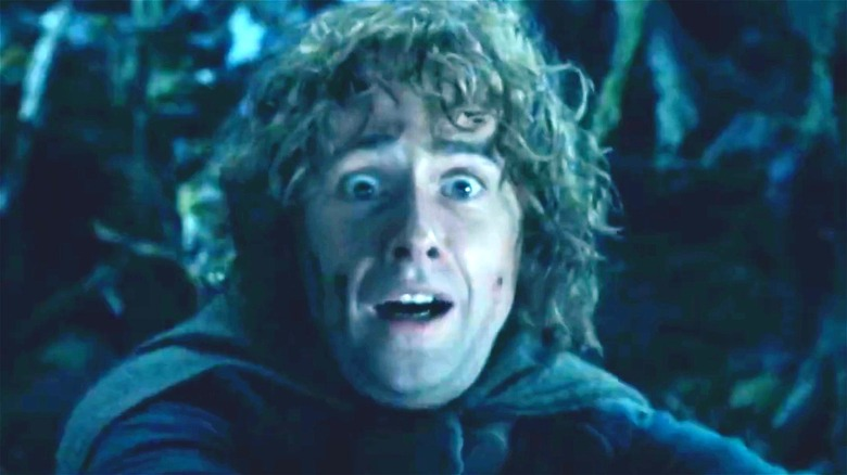 Lord of the Rings Pippin