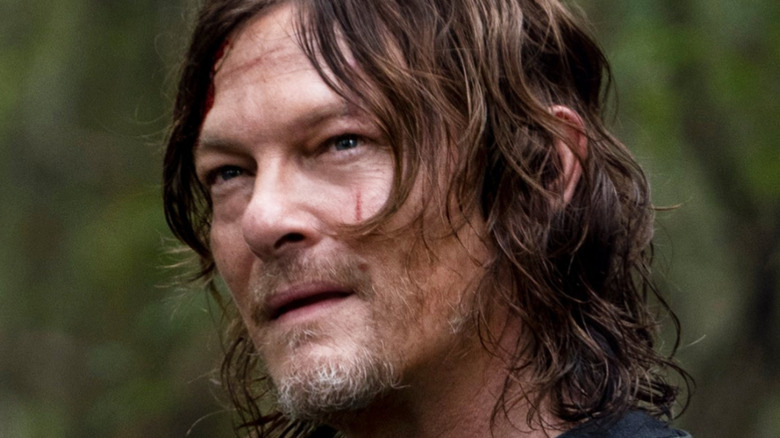 Daryl Dixon The Walking Dead Home Sweet Home