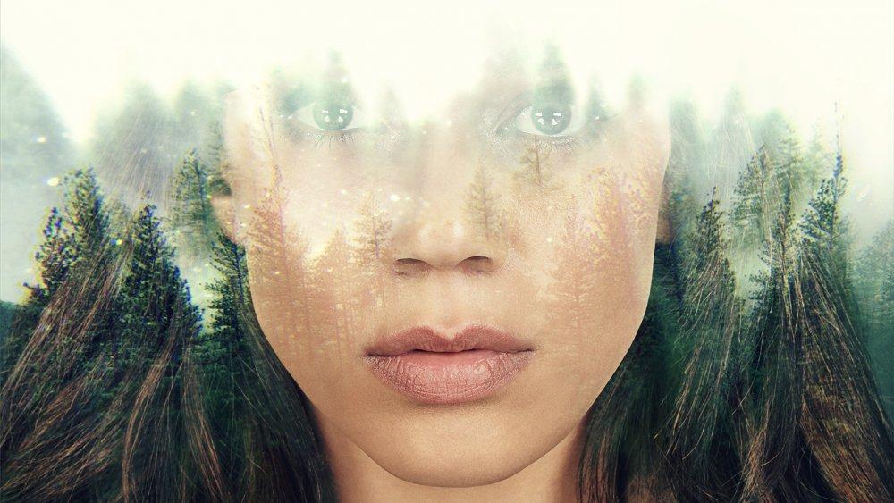 The Stranger promo image
