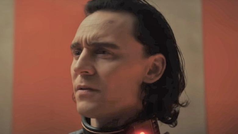 Loki in collar