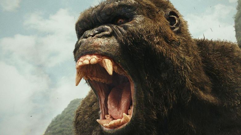 Kong screaming