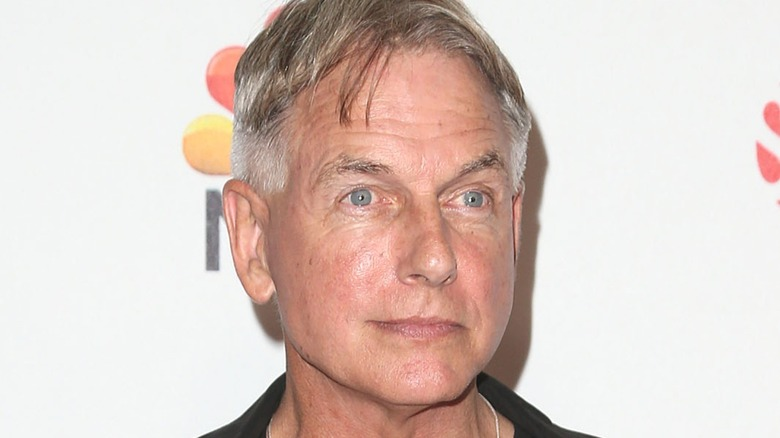 Mark Harmon in front of white background