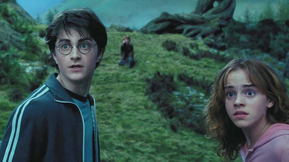 Harry and Hermione looking surprised near the Whomping Willow