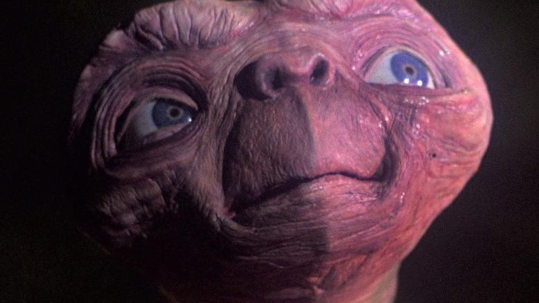 E.T. looks up