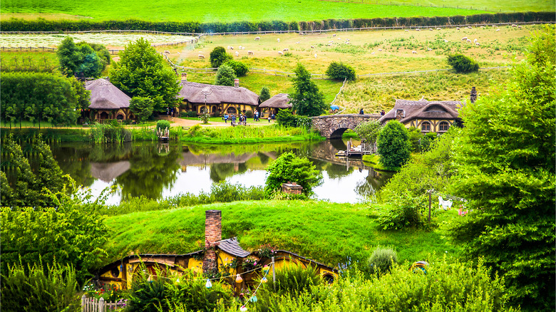 Hobbiton from the Lord of the Rings movies