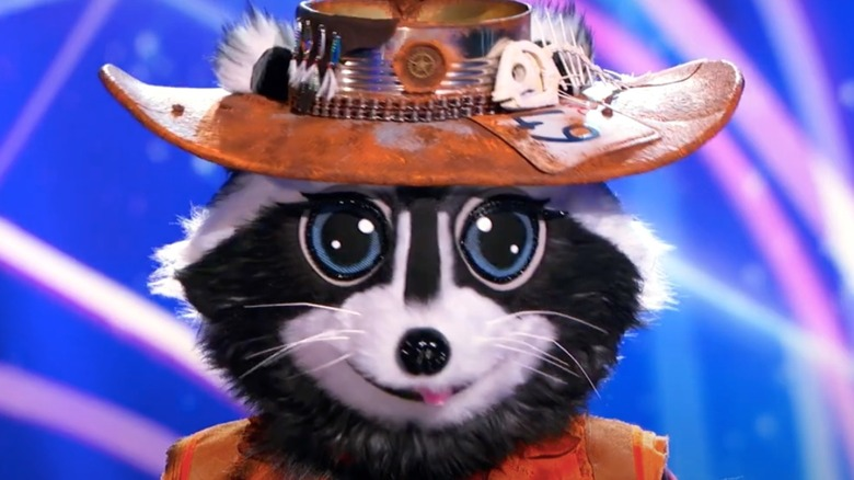 The Raccoon on The Masked Singer