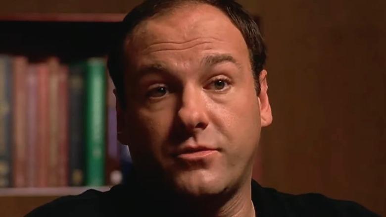 The Sopranos Tony listens