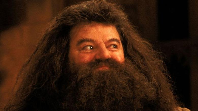 Hagrid smiles mischievously
